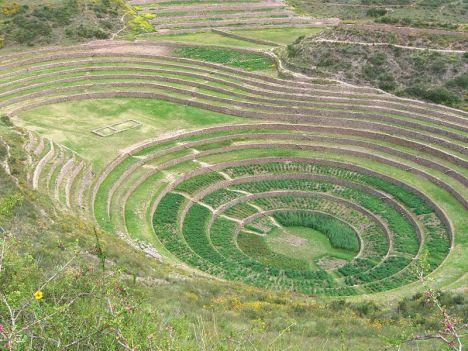 Dagstidsbilde fra en av sirkelterrassene i Moray